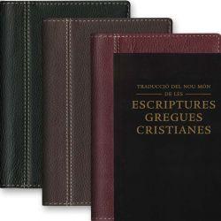 Funda Biblia Catalán - Piel - Sin Cremallera