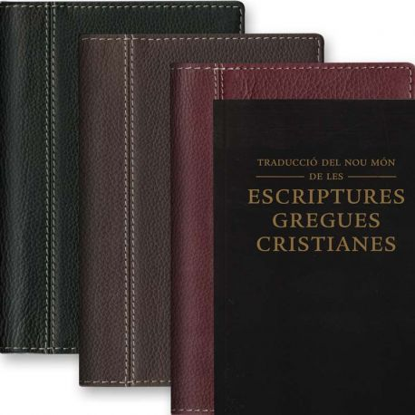Cover for Catalan Bible - Leather