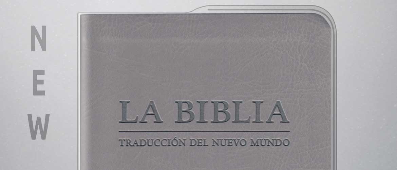 Capa vinil PVC - Bíblia média cinzento